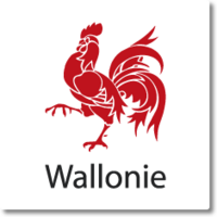 Table ronde TIC du Service Public de Wallonie